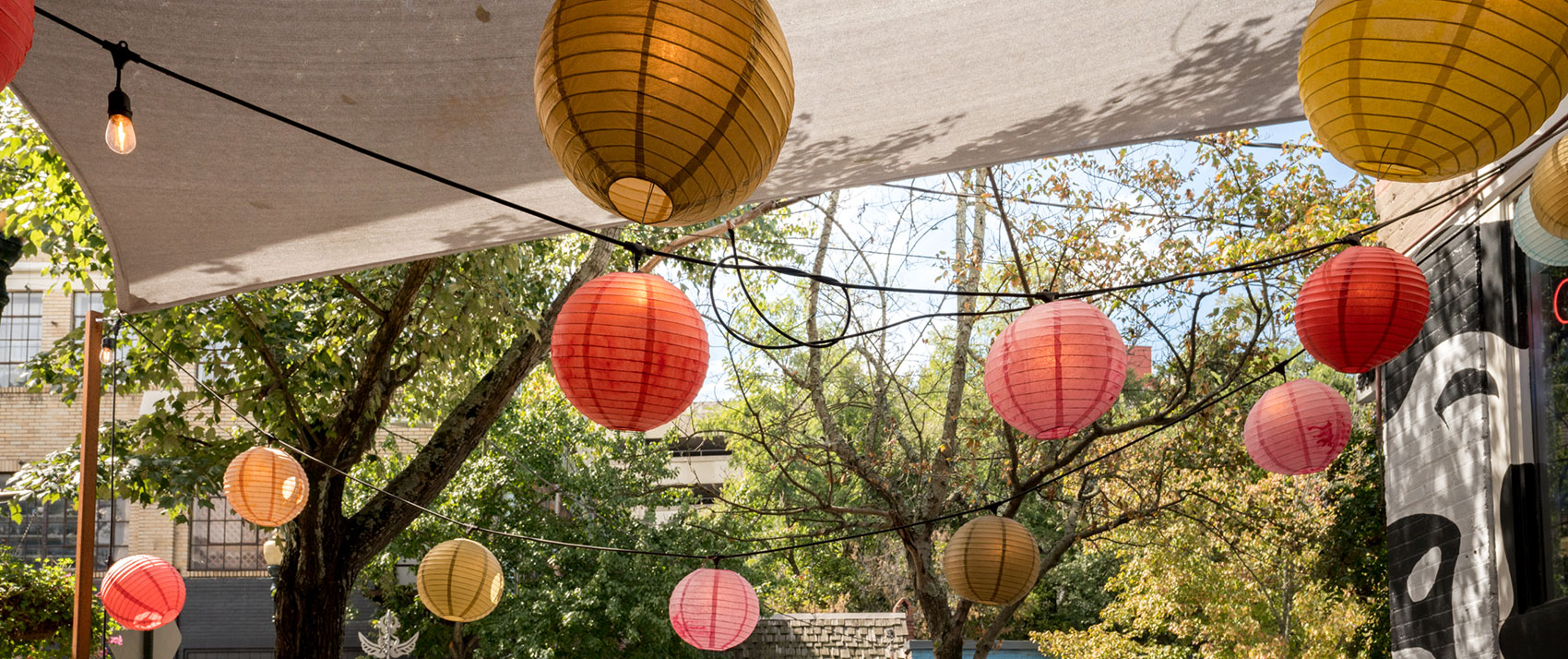 paper lanterns and trees